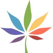 Sespe Creek Collective Cannabis Dispensary in Ojai