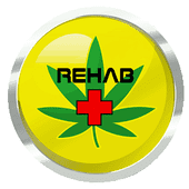 Logo for Rehab Delivery