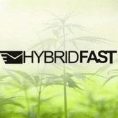 HybridFast.ca Cannabis Dispensary in Kelowna
