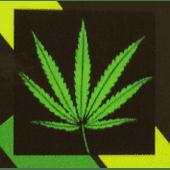 Left Coast Cure Cannabis Dispensary in Santee
