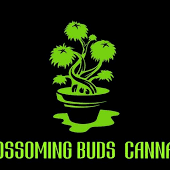Logo for Blossoming Buds Cannabis