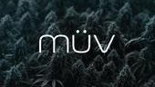 MUV - Phoenix