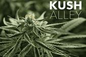 Kush Alley