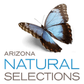 Logo for Arizona Natural Selections - Delivery