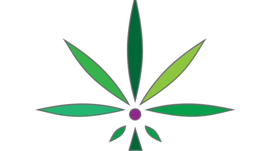 The Flower Shop Dispensary
