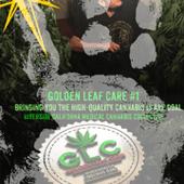 Golden Leaf Care