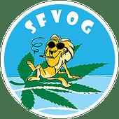 Logo for SFVPC