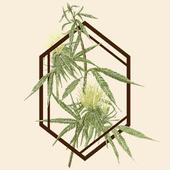 Logo for The Botanist - Baltimore