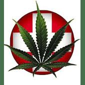The Shop Cannabis Dispensary in Ypsilanti