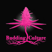 Logo for Budding Culture