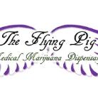 Logo for THE FLYING PIG