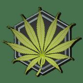 Logo for New Leaf Midtown
