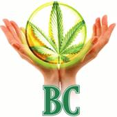 BC Wellness Center Cannabis Dispensary in Black Canyon City