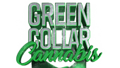 Green Collar Cannabis - Tacoma