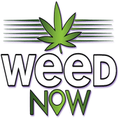 Logo for Weed Now