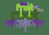 Top Shelf Cannabis - Bellingham