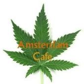 Amsterdam Cafe - Recreational Cannabis Dispensary in Denver