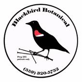 Blackbird Botanical - Fresno Cannabis Dispensary in Fresno