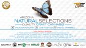 Arizona Natural Selections of Mesa