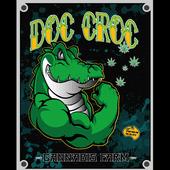 Doc Croc Shatter