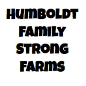 Healing Light Bodega   Killer Purple - Humboldt Family (Delete)