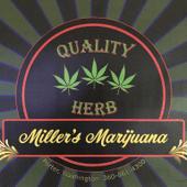 Miller's Marijuana Cannabis Dispensary in Elma