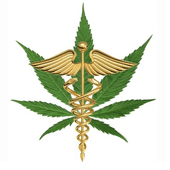 Logo for Toucannabis Wellness Company