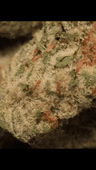 Buds Premium Cannabis- De Beque