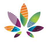 Logo for Ajoya - Louisville