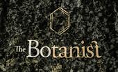 The Botanist - Buffalo