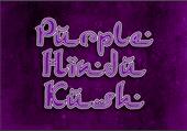 Purple Hindu Kush...