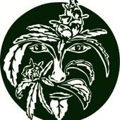Green Man Collective Cannabis Dispensary in Wheeler
