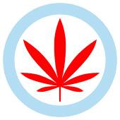 Windy City Cannabis - Worth Cannabis Dispensary in Worth