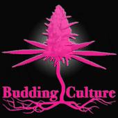 Logo for Budding Culture