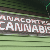 Logo for Anacortes Cannabis / Anacortes Natural Medicine