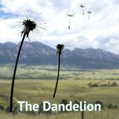 Logo for The Dandelion Dispensary