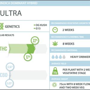 WeedMD   Ultra Clone